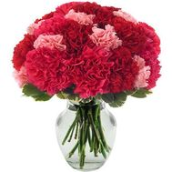 Bouquet of 25 carnations - flowers and bouquets on 7roz.lviv.ua
