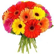 Bouquet of 21 gerbera flowers - flowers and bouquets on 7roz.lviv.ua