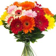 Beautiful bouquet of gerberas - flowers and bouquets on 7roz.lviv.ua