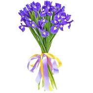 Beautiful bouquet of irises - flowers and bouquets on 7roz.lviv.ua