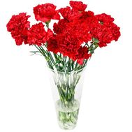 Red carnations in a bouquet - flowers and bouquets on 7roz.lviv.ua