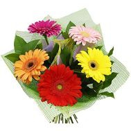 A small bouquet of gerberas - flowers and bouquets on 7roz.lviv.ua