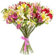 Inviting Alstroemeria Bouquet - flowers and bouquets on 7roz.lviv.ua