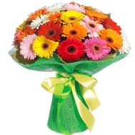 Magnificent bouquet of gerberas - flowers and bouquets on 7roz.lviv.ua