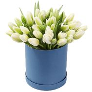 45 white tulips in a box - flowers and bouquets on 7roz.lviv.ua