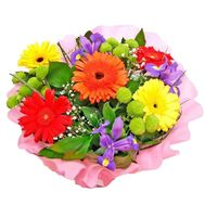 Bouquet of 5 gerberas, 3 chrysanthemums and 3 irises - flowers and bouquets on 7roz.lviv.ua
