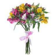 Bouquet of 9 alstromeries - flowers and bouquets on 7roz.lviv.ua