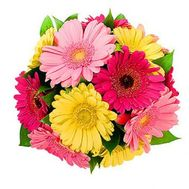 Bouquet of flowers of 13 different colored gerberas - flowers and bouquets on 7roz.lviv.ua
