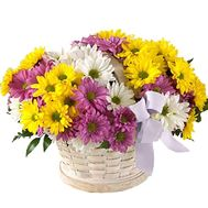 Basket of flowers from 11 multi-colored chrysanthemums - flowers and bouquets on 7roz.lviv.ua