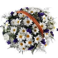 Basket of flowers from 13 chrysanthemums - flowers and bouquets on 7roz.lviv.ua