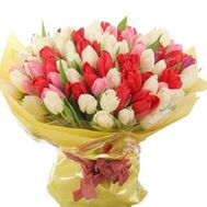 Bouquet of 101 different colored tulips - flowers and bouquets on 7roz.lviv.ua
