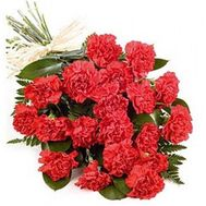 Bouquet of 11 red carnations - flowers and bouquets on 7roz.lviv.ua