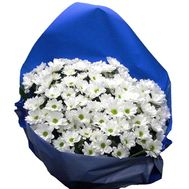 Bouquet of 11 branches of chrysanthemum - flowers and bouquets on 7roz.lviv.ua