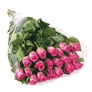 Bouquet of 17 imported roses - flowers and bouquets on 7roz.lviv.ua