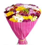 Bouquet of 25 chrysanthemums - flowers and bouquets on 7roz.lviv.ua