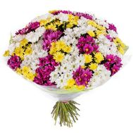 Bouquet of 51 chrysanthemums - flowers and bouquets on 7roz.lviv.ua