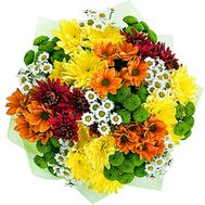 Bouquet of 21 multi-colored chrysanthemums - flowers and bouquets on 7roz.lviv.ua