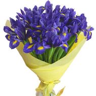 Bouquet of flowers from 35 irises - flowers and bouquets on 7roz.lviv.ua