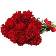 Bouquet of 13 carnations - flowers and bouquets on 7roz.lviv.ua