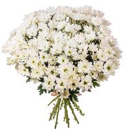 Bouquet of 13 chamomile chrysanthemums - flowers and bouquets on 7roz.lviv.ua
