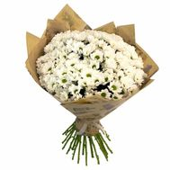 Bouquet of 25 chamomile chrysanthemums - flowers and bouquets on 7roz.lviv.ua