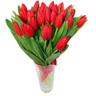 Bouquet of 23 red tulips - flowers and bouquets on 7roz.lviv.ua