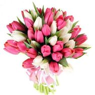 Bouquet of 55 tulips - flowers and bouquets on 7roz.lviv.ua