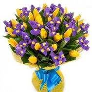 Bouquet of 25 tulips and 20 irises - flowers and bouquets on 7roz.lviv.ua
