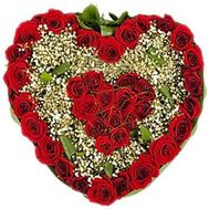 Heart of 39 roses and gypsophila - flowers and bouquets on 7roz.lviv.ua