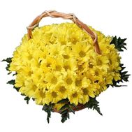 Basket of flowers from 19 chrysanthemums - flowers and bouquets on 7roz.lviv.ua