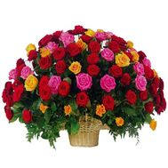 Basket of 101 different colored roses - flowers and bouquets on 7roz.lviv.ua