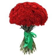Bouquet of 55 carnations - flowers and bouquets on 7roz.lviv.ua