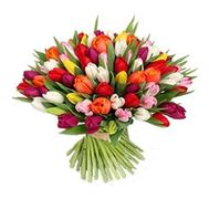 Bouquet of flowers from 101 tulips - flowers and bouquets on 7roz.lviv.ua