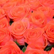 Orange roses by the piece - flowers and bouquets on 7roz.lviv.ua