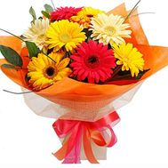 Bouquet of 9 different gerberas - flowers and bouquets on 7roz.lviv.ua